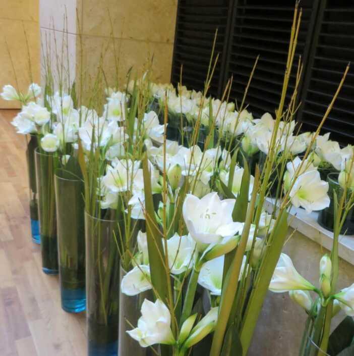Bodenvasenfüllung mit weißen Amaryllis B - Blüten