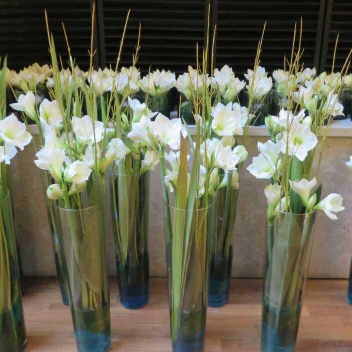 Bodenvasenfüllung mit weißen Amaryllis - Blüten