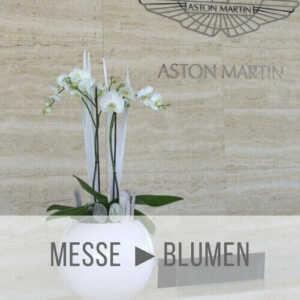 Messe Blumen Düsseldorf