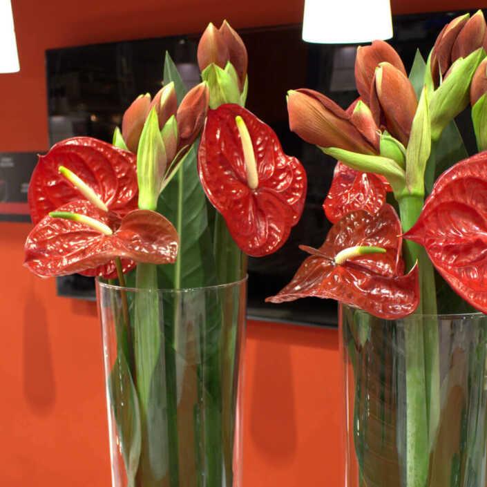 Raumdekoration mit roten Blüten