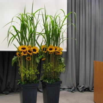 Rednerpult - Gesteck in Düsseldorf - Blumen