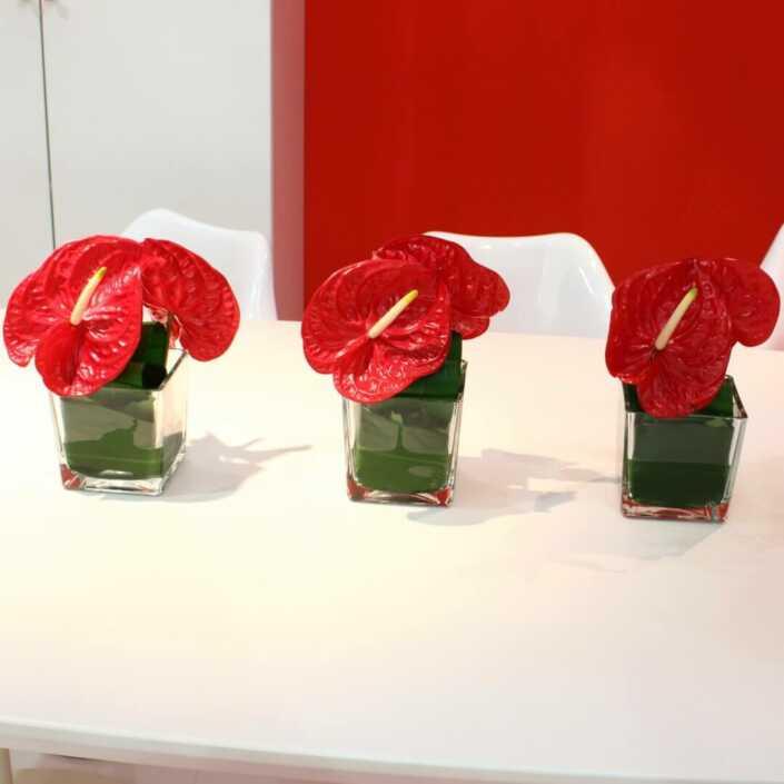 Tischdekoration mit roten Anturienblüten