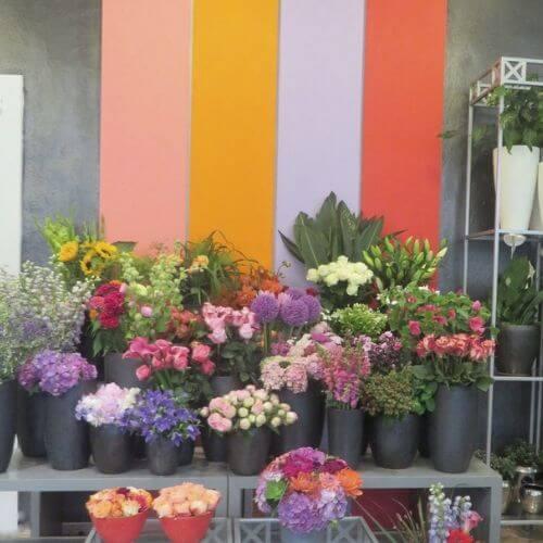 Blumen-Lehmann-Ihr-Blumenladen-in-Düsseldorf