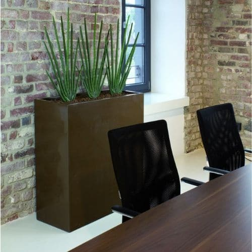 Büro-Pflanzen-Düsseldorf-Bepflanzung-Saneveria