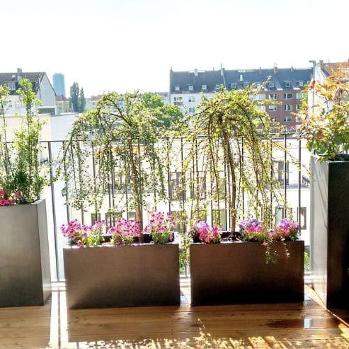 Balkon-Bepflanzung-Düsseldorf-2
