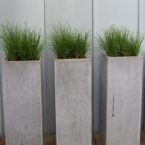 Balkon-Bepflanzungen-in-Düsseldorf-3
