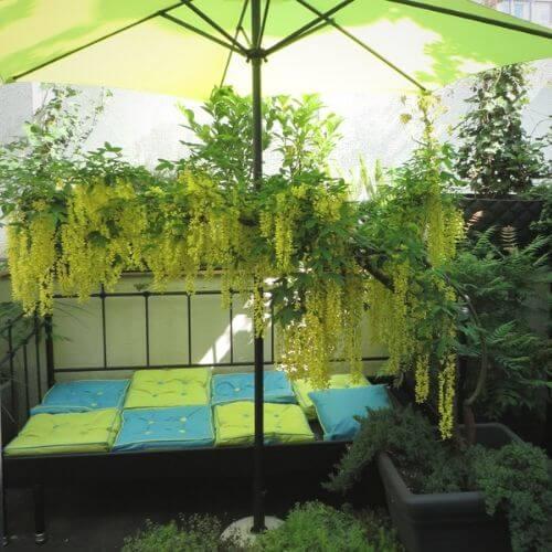 Dachgarten - Balkon - Terrassen - Pflanzen - Bepflanzung