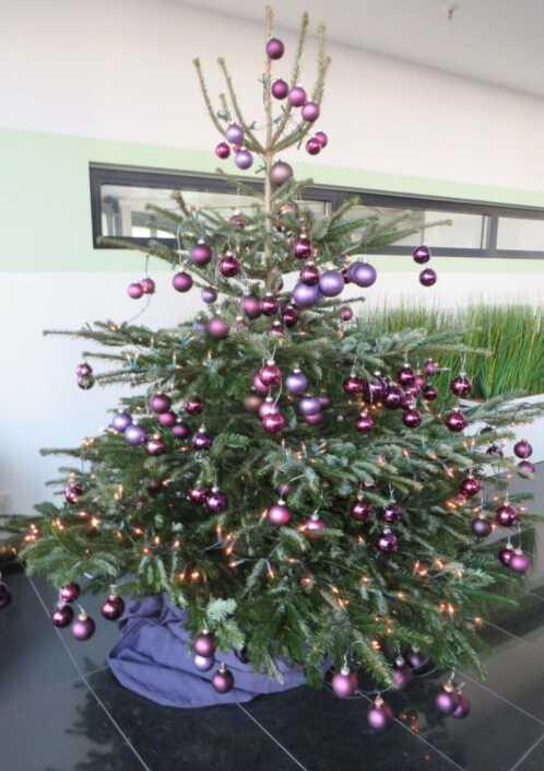 Weihnachtsbaum-lila-Kugeln-Düsseldorf