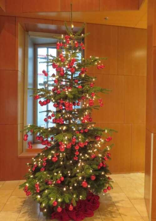 Weihnachtsbaum-mit-Lichterkette-rot-Düsseldorf