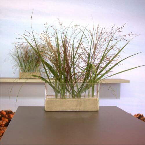 Gräser-Deko-1