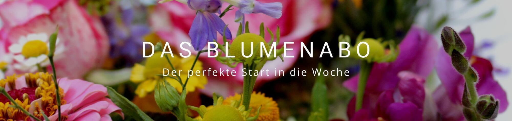 Blumenabo Düsseldorf Blumen Abo
