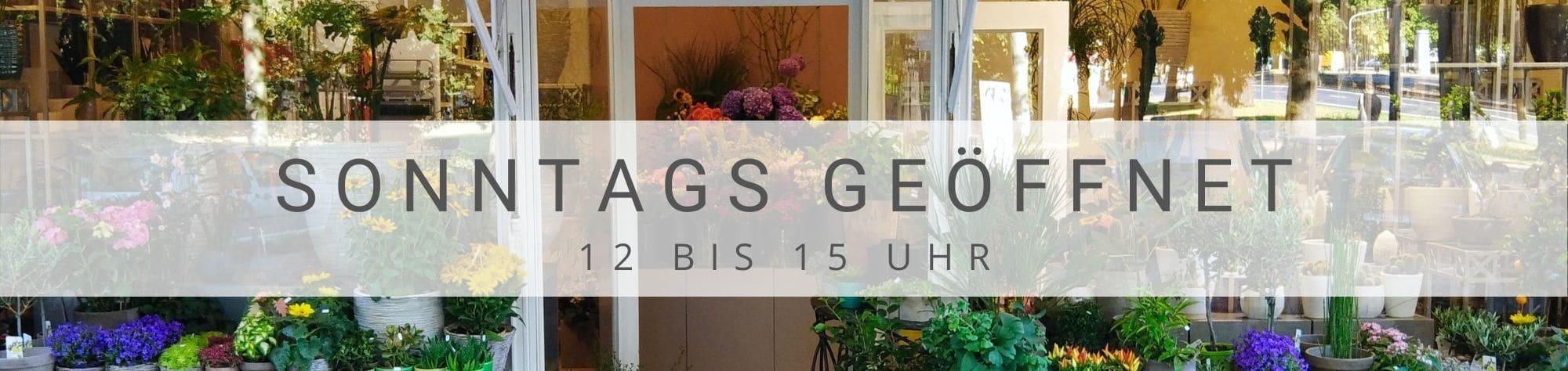 Blumen Sonntag Düsseldorf - Unser Blumenladen ist sonntags geöffnet
