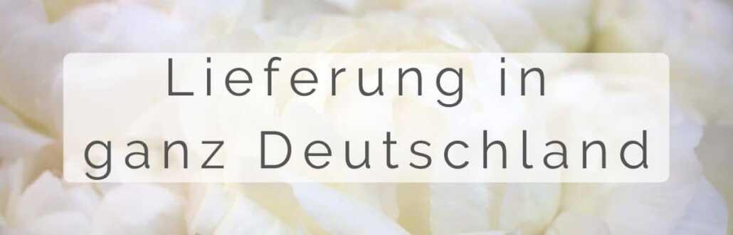 Blumen Düsseldorf - Blumenlanden in Düsseldorf