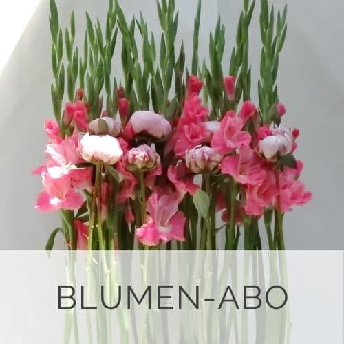 Blumen-ABO-Düsseldorf