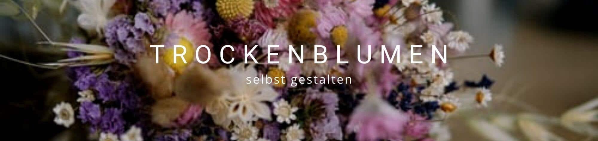 Trockenblumen Düsseldorf - Trockenblumenstrauß