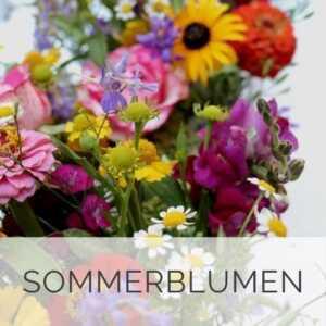 Blumenladen Düsseldorf - Sommer-Blumen Düsseldorf