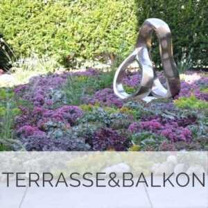 Terrasse und Balkon Bepflanzungen Düsseldorf